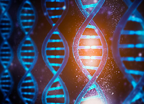 Biochemists Switch DNA Functions on and Off Using Light